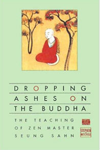 Dropping Ashes on the Buddha The Teachings of Zen Master Seung Sahn