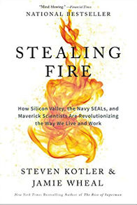 Stealing Fire How Silicon Valley the Navy SEALs and Maverick Scientists Are Revolutionizing the Way
